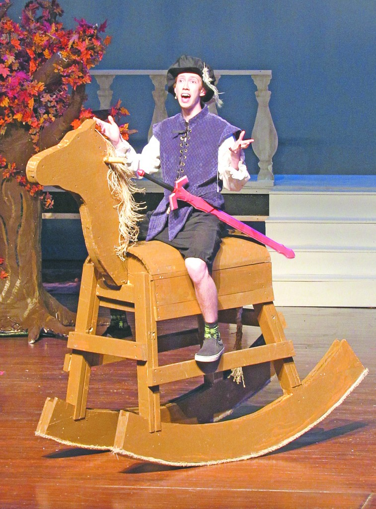 "DCHS senior Ethan Langemo plays Prince Topher in ""Cinderella,"" and rides off stage on his magestic steed ""Buttercup"" several times throughout the show."