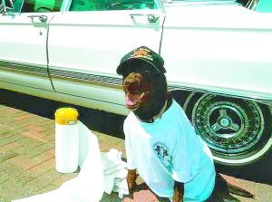 Meka likes to help wash the car.